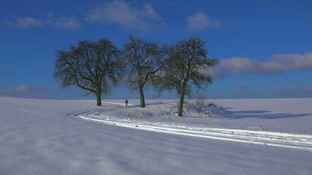Woman walking in winter landscape