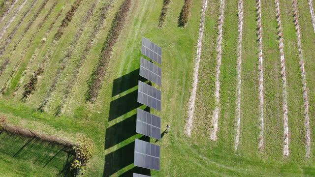 vídeos y material grabado en eventos de stock de woman walking next to solar panels on farm - granja ecológica