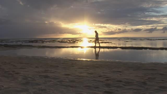 ws, woman walking on beach at sunset, moorea island, tahiti, french polynesia - solfjäderspalm bildbanksvideor och videomaterial från bakom kulisserna