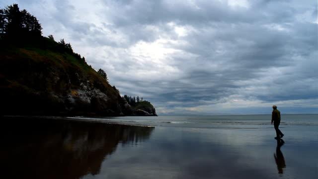 ws, pan, woman walking on beach, long beach, washington, usa  - norra stilla havet bildbanksvideor och videomaterial från bakom kulisserna
