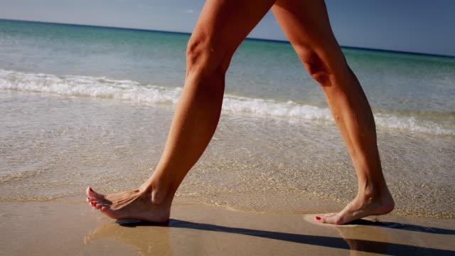 vídeos de stock, filmes e b-roll de mulher caminhando na praia - pegada