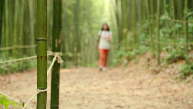 a woman walking on promenade in bamboo grove - damyang stock videos & royalty-free footage