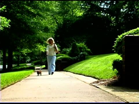 woman walking on sidewalk with dogs - haustierleine stock-videos und b-roll-filmmaterial