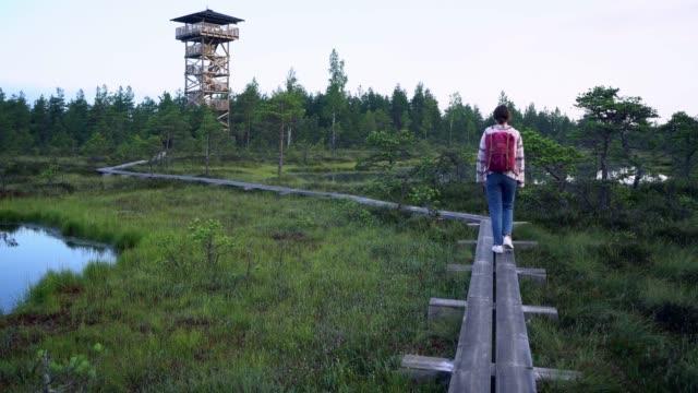 vidéos et rushes de femme marchant sur le marais en estonie - étang