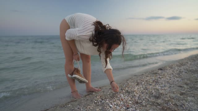 woman walking on the beach - animal shell stock videos & royalty-free footage