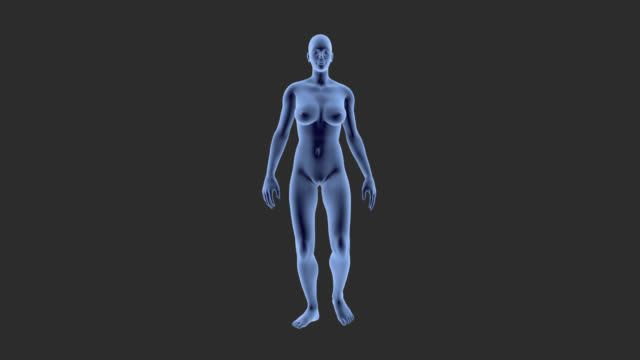 woman walking on transparent backgound, for medicinal animation. - cartilage stock videos & royalty-free footage