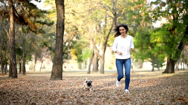 woman walking pug in a park - cagnolino da salotto video stock e b–roll