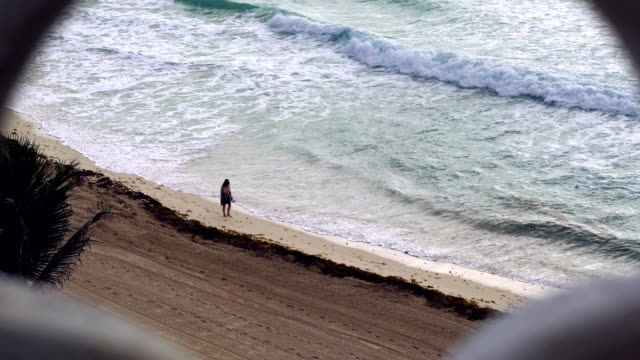 woman walking the caribbean beach - cozumel stock videos and b-roll footage