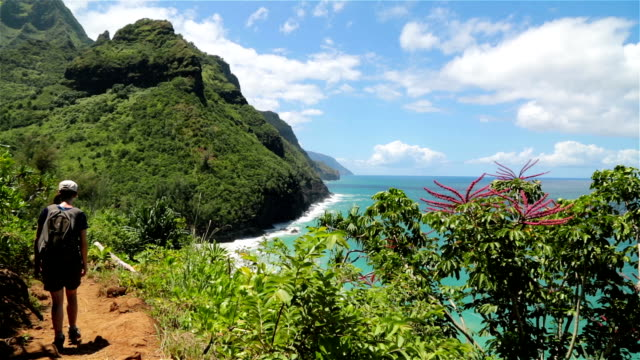 woman walking the kalalau trail, napali coast state park, kauai - na pali coast state park stock videos & royalty-free footage