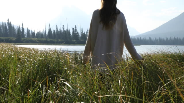 a woman walking through a field of grass during sunrise in banff national park. - long stock videos & royalty-free footage