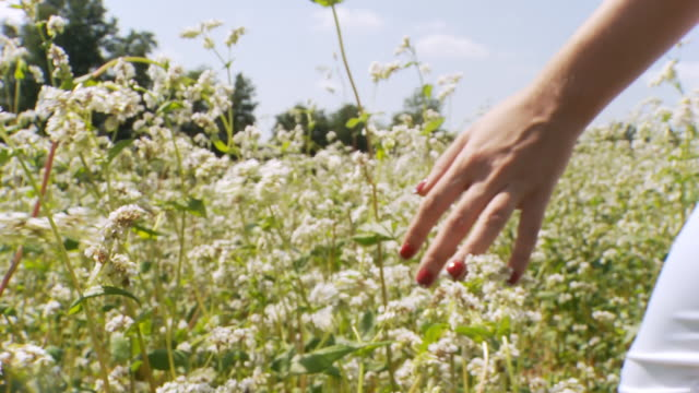 HD: Woman Walking Through Field Of Flowers