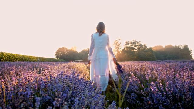 ws woman walking through field of lavender - lavender stock videos & royalty-free footage