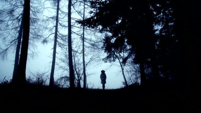 vídeos de stock, filmes e b-roll de mulher caminhando através da floresta - fuga