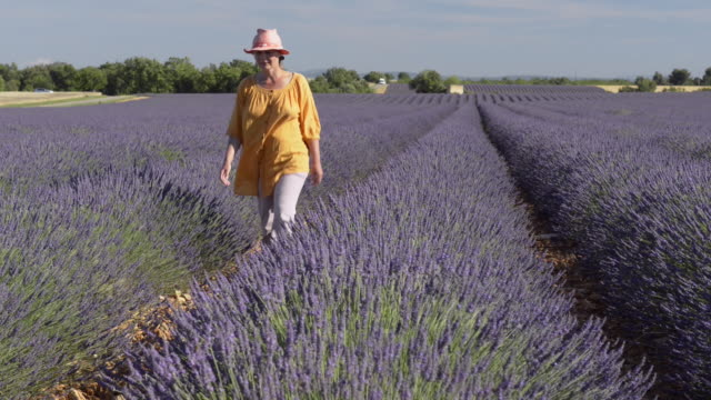A woman walking through lavender in field