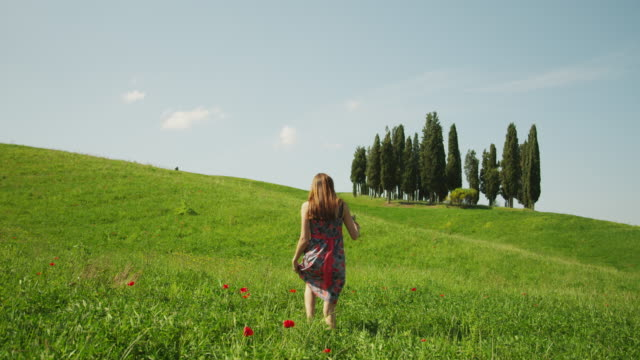 ws woman walking through meadow / tuscany - newoutdoors stock videos & royalty-free footage