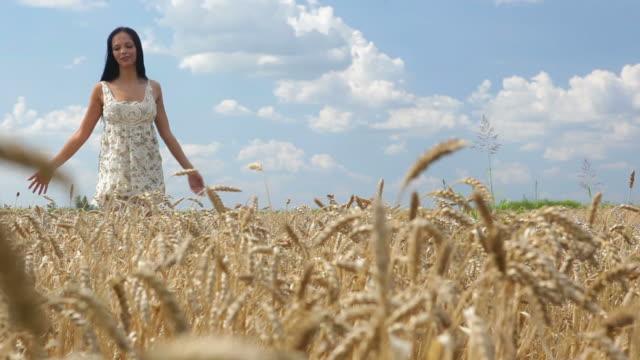 vídeos de stock e filmes b-roll de hd: mulher andar através de prado grama-de-ponta - membro humano
