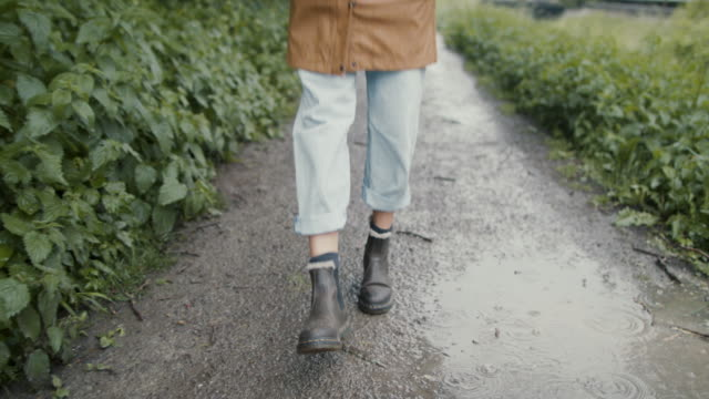 woman walking through puddles on footpath - warm clothing stock videos & royalty-free footage