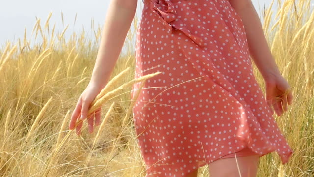 woman walking through sand dunes and touching the long grass. sm - sundress stock videos & royalty-free footage