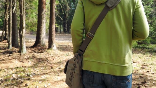 松の森を歩く女性
