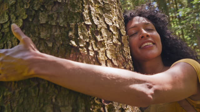 ts woman walking to a tree in the forest and hugging it - tree hugging stock videos & royalty-free footage