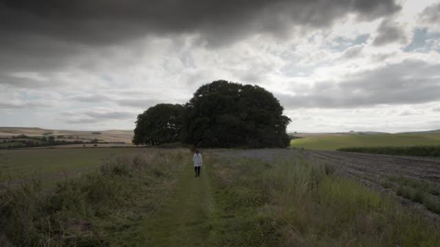 a woman walking towards the avebury barrows at overton hill - avebury stock videos & royalty-free footage