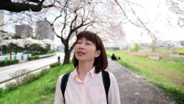 woman walking under blooming cherry tree - one mid adult woman only stock videos & royalty-free footage