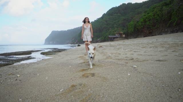 vídeos de stock, filmes e b-roll de mulher que anda com o cão na praia em bali - vista frontal