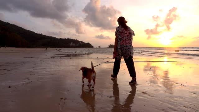 ビーチのスローモーションで犬と一緒に歩いている女性 - 犬点の映像素材/bロール