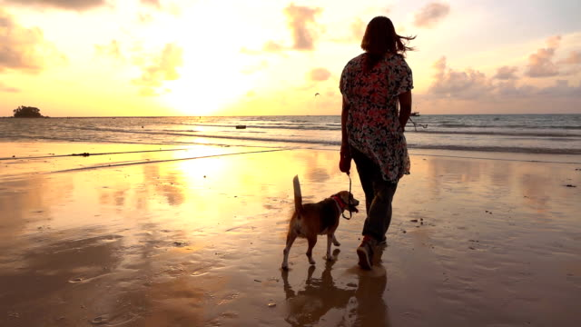 Woman Walking with dog on the beach slow motion