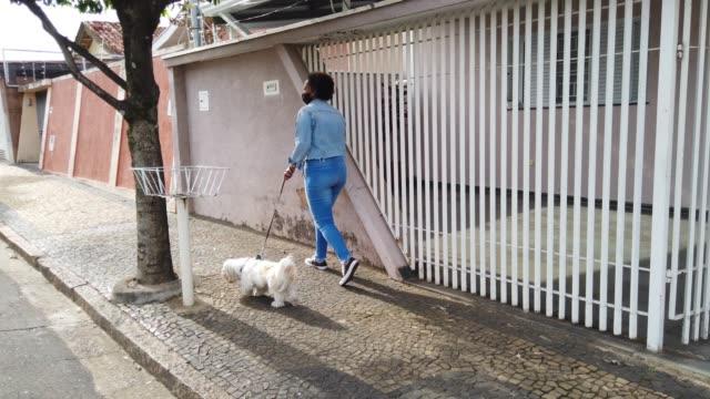 vídeos de stock, filmes e b-roll de mulher andando com seu cachorro na rua usando máscara facial protetora. - animal de estimação