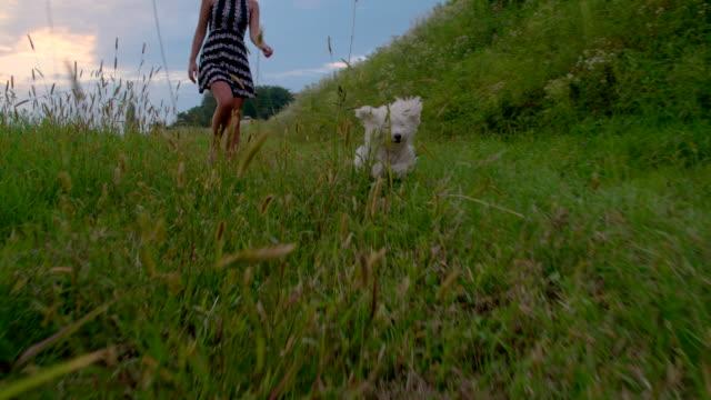SLO MO mulher Andar com seu cão