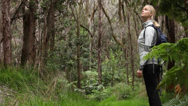 stockvideo's en b-roll-footage met vrouw wandelingen langs groene jungle trail, het dragen van de rugzak - pacifische eilanden