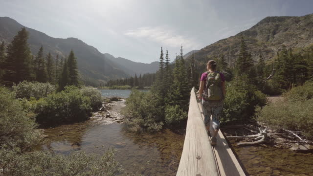 vídeos de stock, filmes e b-roll de mulher caminha ao longo da trilha de montanha, no início do verão - descoberta