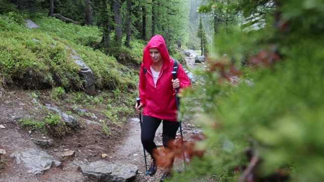 woman walks along mountain trail, in rainstorm - jacket stock videos & royalty-free footage
