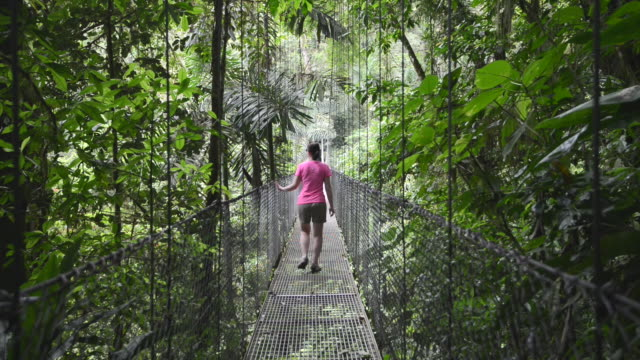 woman walks along pathway through jungle - costa rica stock videos and b-roll footage
