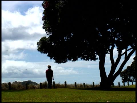 woman walks away - across park under large treee - letterbox format bildbanksvideor och videomaterial från bakom kulisserna