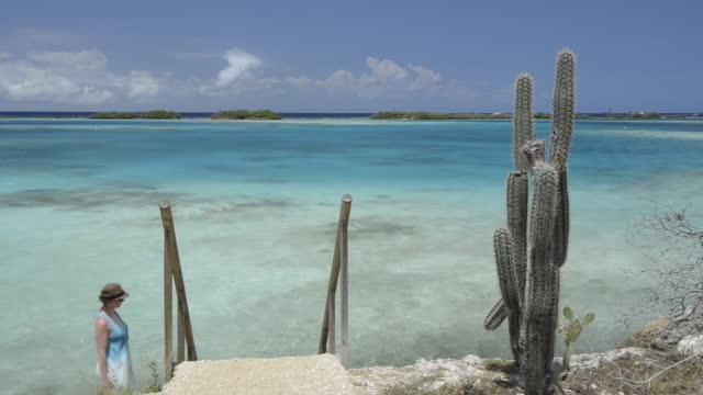woman walks down stairs to dock, overlooking ocean - cactus stock videos & royalty-free footage