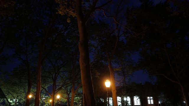 stockvideo's en b-roll-footage met woman walks her dog along john jay park in manhattan on may 17 in new york city. a few days earlier, mayor bill de blasio said the city aims to fully... - dog run