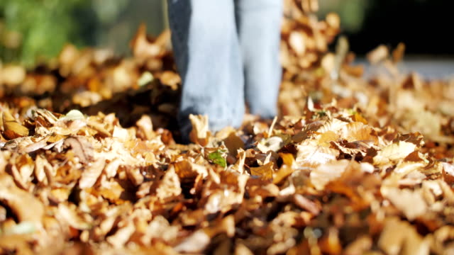 woman walks in leaves slow motion - martin luther: his life and time stock videos & royalty-free footage