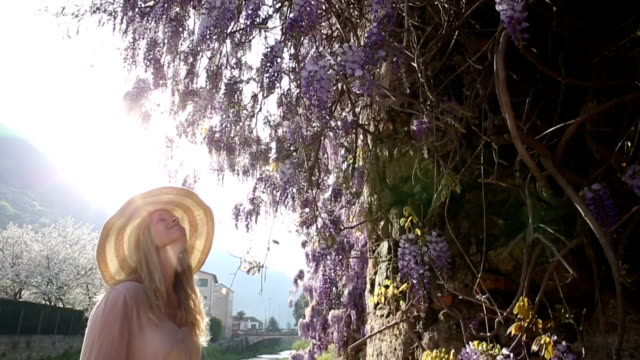 woman walks past wisteria blossoms, pauses to enjoy perfume - pendere video stock e b–roll