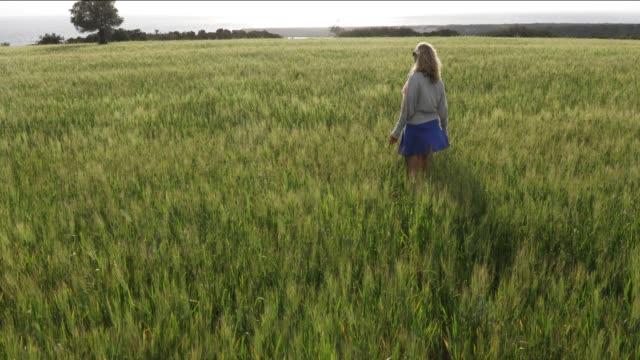 Woman walks through grain field, before harvest