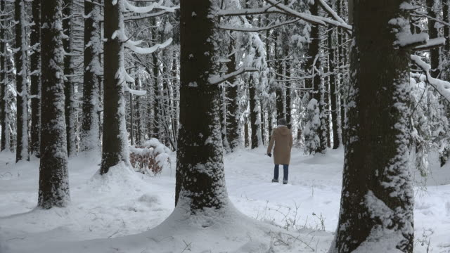 woman walks through snow-covered forest in winter - wintermantel stock-videos und b-roll-filmmaterial