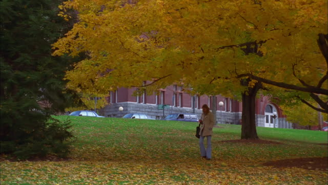 vídeos de stock, filmes e b-roll de woman walks through university campus grounds with trees in autumn leaf, burlington, vermont available in hd. - ensino superior