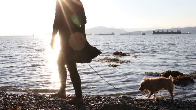Vrouw wandelen Yorkshire terrier hond langs strand, rand van de Oceaan