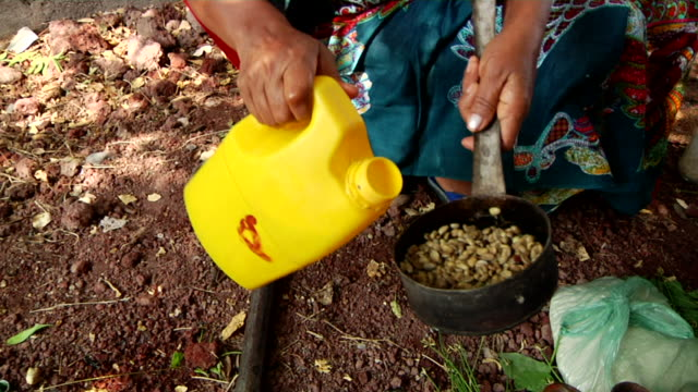 woman washing coffee grains for coffee ceremony - エチオピア点の映像素材/bロール