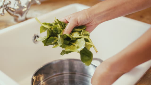 woman washing fresh spinach in kitchen at home - avocado salad stock videos & royalty-free footage