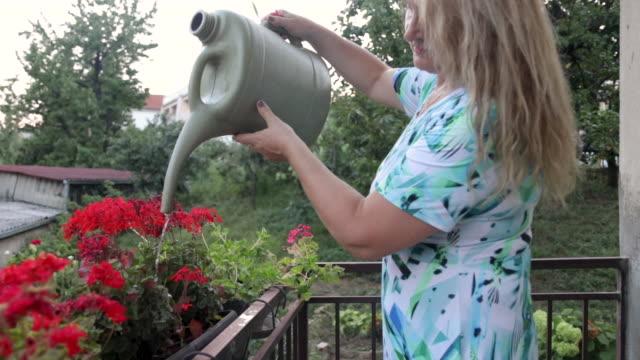 vídeos y material grabado en eventos de stock de mujer regando flores en el balcón - regar