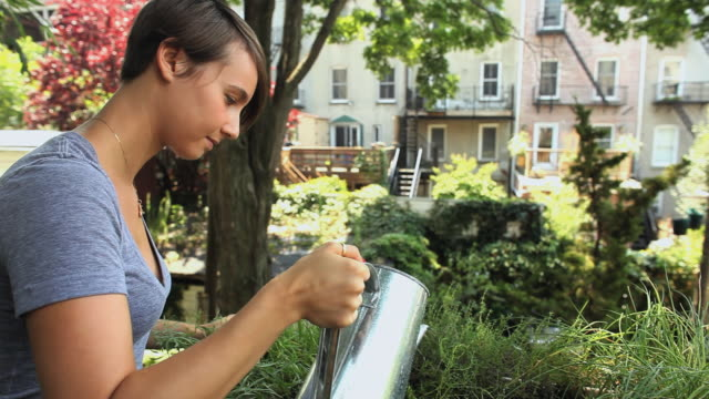 stockvideo's en b-roll-footage met cu woman watering herbs on balcony / jersey city, new jersey, usa - balkon