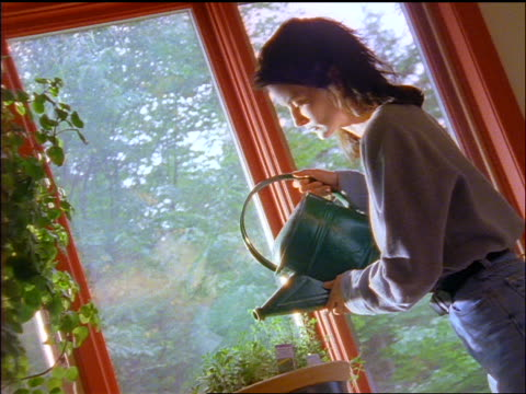 Woman watering plants by window indoors