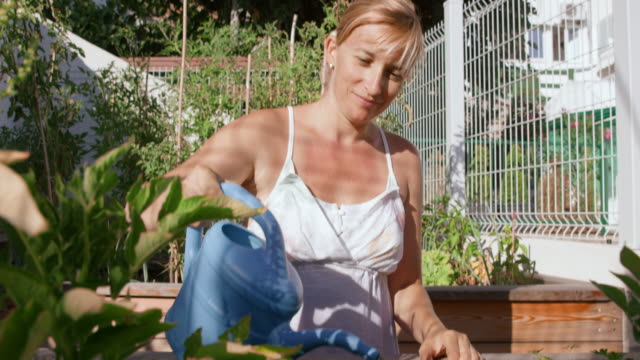 TU Woman watering plants in her garden on sunny day